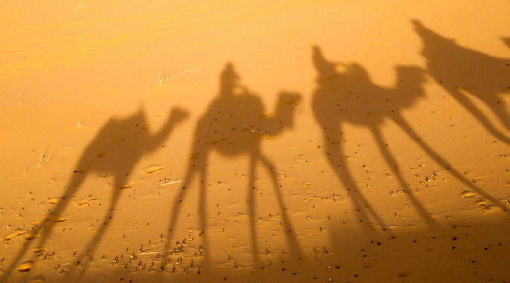 afrika, destinacija, zemlja, kamila, pesak, pustinja