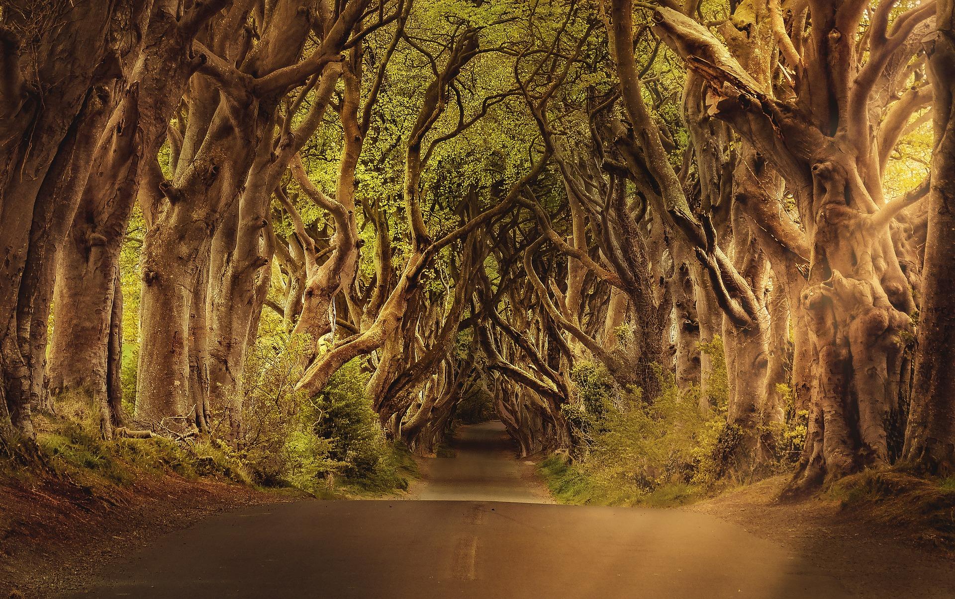Igra prestola, serija, game of thrones, lokacije