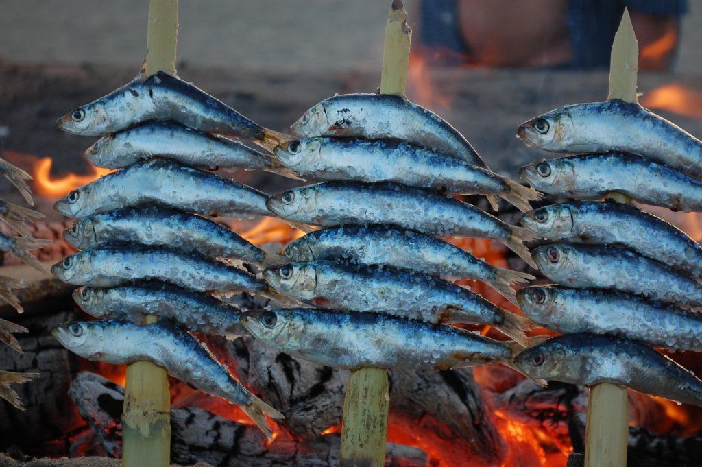 grolovane sardine, malaga, španija, kulinarstvo, kuhinja